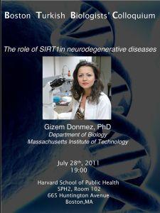 2011-07 Gizem Donmez